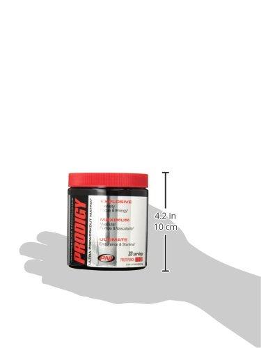 Premium Nutraceuticals International Prodigy Supplement, Fruit Punch, 246 Gram