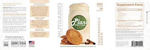 NutraBio Plant Protein - Complete Amino Acid Profile - 20G of Protein per Scoop - Gluten and Dairy Free, Zero Fillers, Naturally Sweetened, Non-GMO, USA Made Protein Powder - Snickerdoodle Cookie