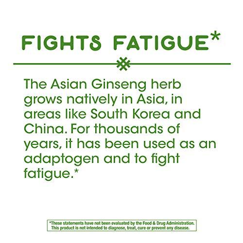 Nature's Way Premium Herbal Asian Ginseng, 1,120 mg per serving, 50 Capsules