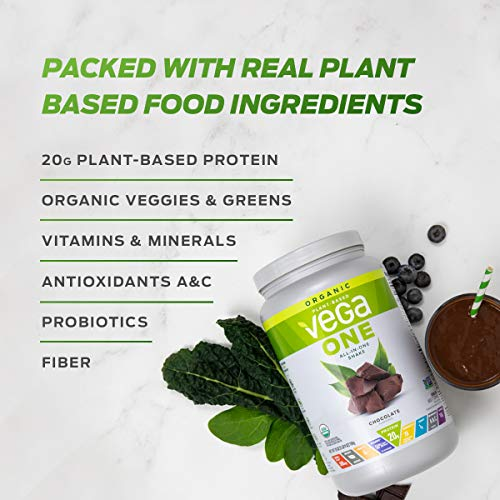 Vega One All-in-One Natural - Plant Based Vegan Protein Powder, Non Dairy, Gluten Free, Non GMO, (10 Servings), 15.2 Ounce (Pack of 1)