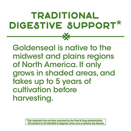 Nature's Way Premium Herbal Goldenseal Root, 1,140 mg per serving, 50 Capsules