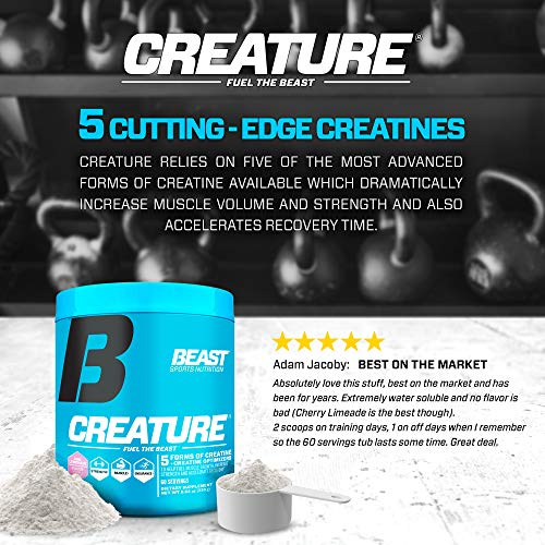 Beast Sports Nutrition Creature - Beast Punch - 60 Servings
