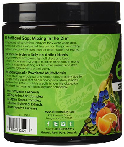 NutraKey Envie, Powdered Multivitamin with Fruits, Greens, Antioxidants, Digestive Enzymes and Amino Acids, 35 Servings (Wild Berry, 210g (35 Servings))