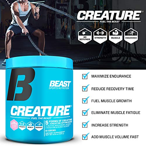 Beast Sports Nutrition - Creature Creatine Complex with Creapure® - Fuel Muscle Growth - Increase Strength - Enhance Endurance - Reduce Recovery Time - 5 Forms of Creatine - Cherry Limeade 60 Servings