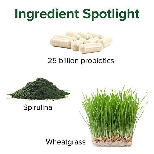 Vibrant Health, Green Vibrance, Vegan Superfood Powder, 15 Servings