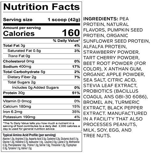 Vega Sport Premium Protein Powder, Berry, Plant Based Protein Powder for Post Workout - Certified Vegan, Vegetarian, Keto-Friendly, Gluten Free, Dairy Free, BCAA Amino Acid (19 Servings / 1lb 12 oz)