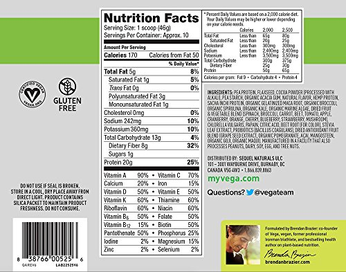 Vega One All-In-One Nutritional Shake Chocolate (10 Servings) - Plant Based Vegan Protein Powder, Non Dairy, Gluten Free, Non GMO, 16 Ounce (Pack of 1)